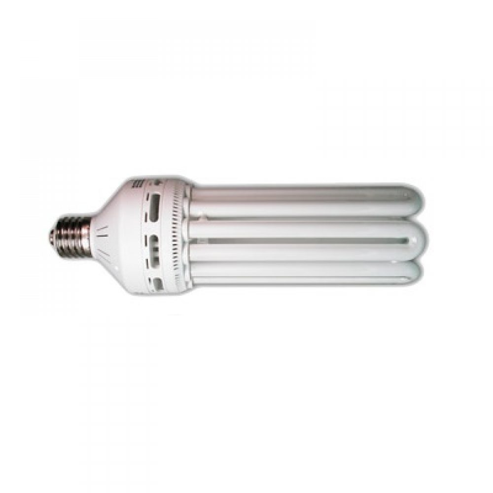125W Compact Fluorescent Bulb - Warm