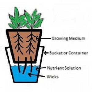 Bucket Wick System