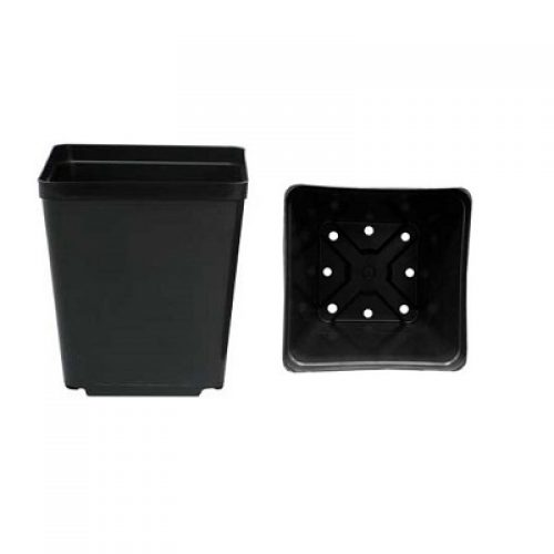 "McConkey 6"" Square Pot"